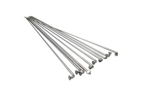 zbice-dt-swiss-stainless-252mm
